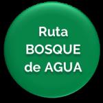 BOTON_RUTABOSQUEDEAGUA
